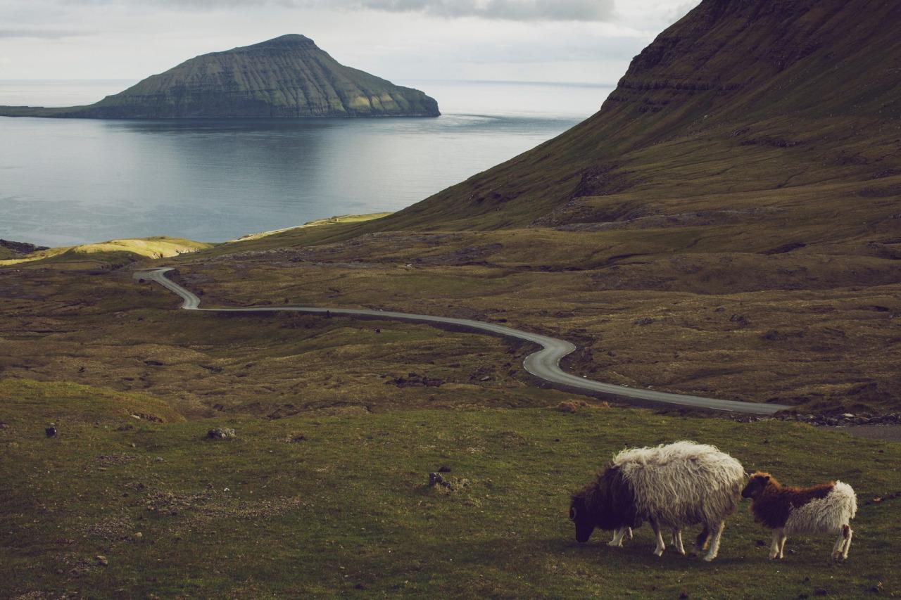 Faroer, Island